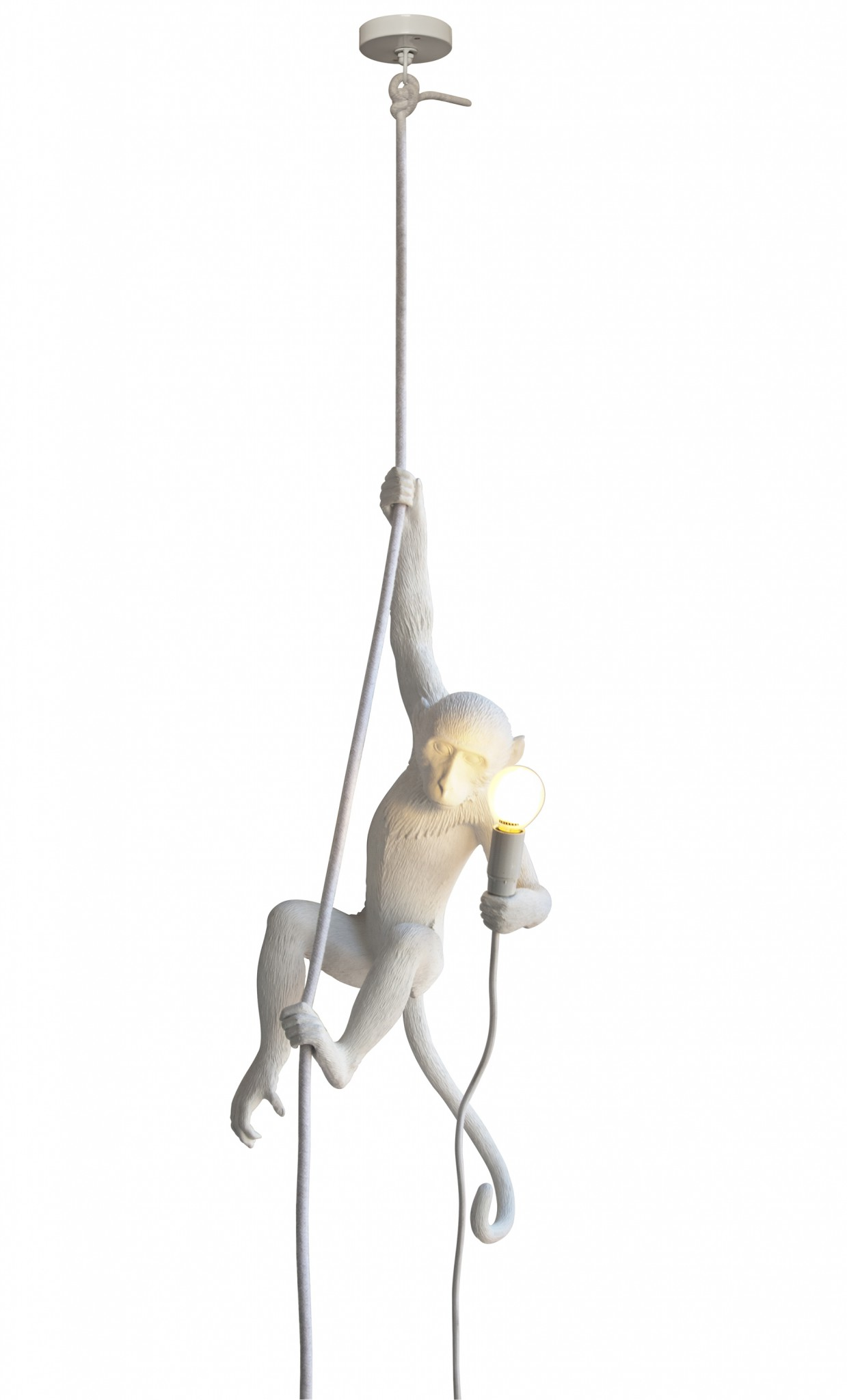 the monkey lamp seletti