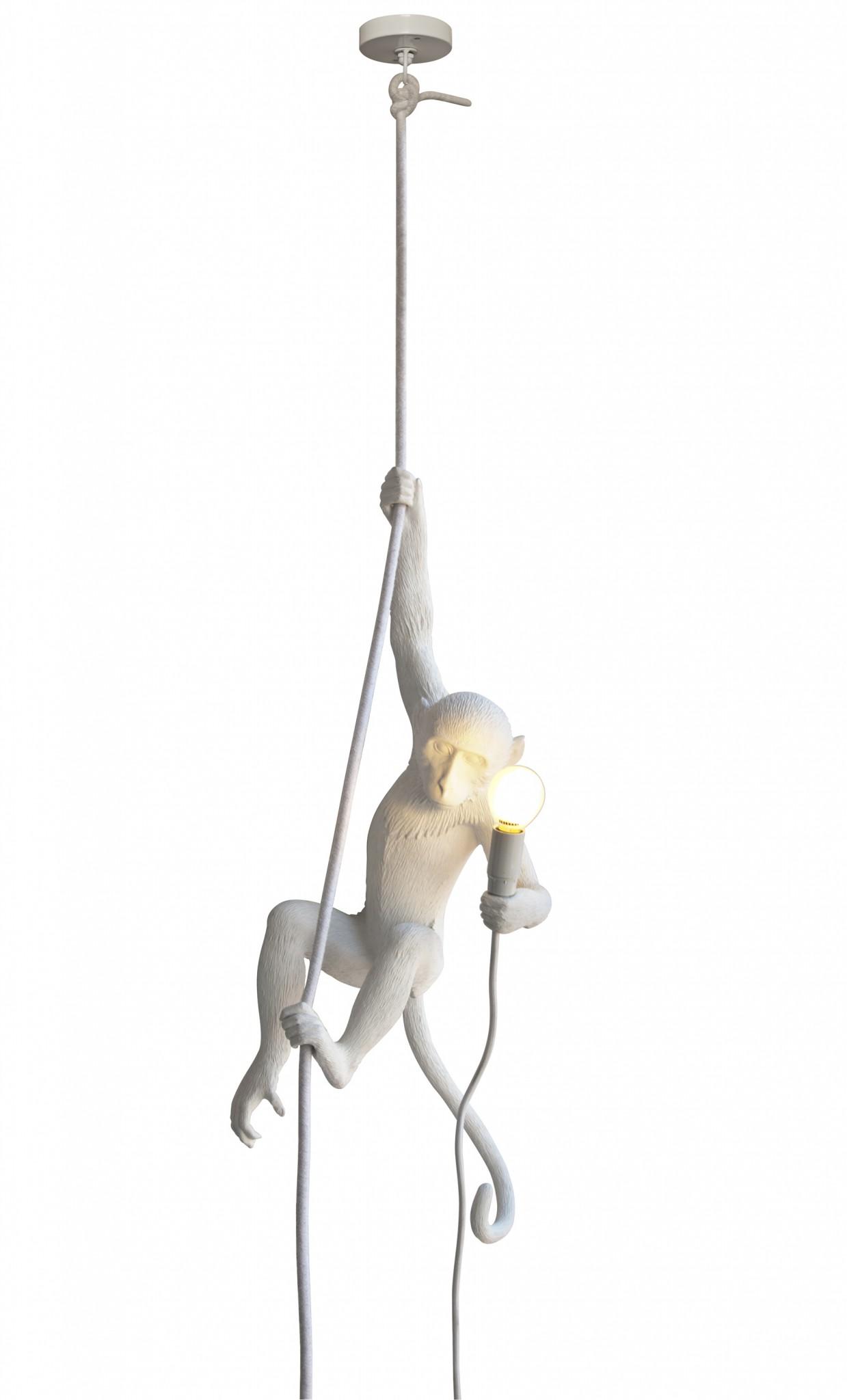 the monkey lamp seletti